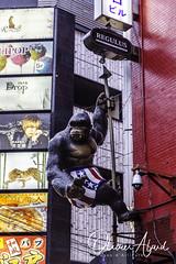 Japan19T_IO_0498-1 (oalard) Tags: japan japon canon 1dmkiv tokyo city ville street rue