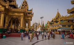 [Birmanie] Décembre 2018 - Janvier 2019 (#vmivelaz) Tags: birmanie myanmar vmivelaz vincent mivelaz wwwvincentmivelazcom asia asie canon