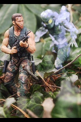The jungle came alive (resistance827) Tags: action figure predator neca necapredator avp actionfigure toy toyphotography photography