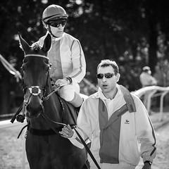 Team Mates (Tom Levold (www.levold.de/photosphere)) Tags: afsvrzoomnikkor70300 cologne d700 köln nikon race racetrack rennbahn bw sw people jockey horse pferd