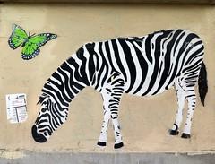 Street art in Paris 20th by Mosko & Associés (Sokleine) Tags: streetart street wall mur mural nature animal dream artderue arturbain urbanart school playschool écolematernelle jourdain paris 75020 france zèbre zebra papillon butterfly
