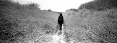 I'll Follow Her (Winter Wonderland) (selyfriday) Tags: selyfriday wwwnassiocomempty nassiocom hasselblad xpan analogue film 35mm wide panorama 2711 kodak kodaktmax400 400iso tmax400 rodinal 125 6minutes 20˙c nederland netherla nds dutch holland bakkum dunes walk path trail love