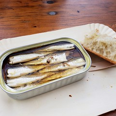 Sardines In A Can (Joe Shlabotnik) Tags: galaxys9 cameraphone rosabonheur paris france april2018 butteschaumont sardines 2018 food faved zeroviewsonefave can tin fish