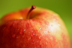 Apple... (Maria Godfrida) Tags: lookingcloseonfriday apples fruit food delicious light closeup macro red waterdrops droplets colourful bokeh