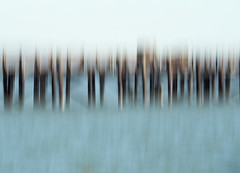 Intentional Camera Movement - Pier (Stephen Sarhad) Tags: marin marincounty sanrafael icm intentionalcameramovement abstract ca usa