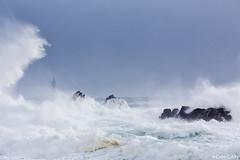 coup de vent (cedric.cain29) Tags: cedriccaïn ouessant îledouessant iroise bretagne finistère phare lighthouse pharedelajument lajument lumièresdouessant rochers paysages bzh tempête