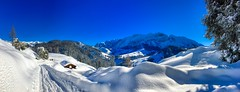 Winter panorama of Kaiser mountains near Kufstein, Tyrol, Austria (UweBKK (α 77 on )) Tags: winter snow ice cold blue sky white tree view scenery scene scenic landscape kaiser mountains kaisergebirge kufstein tyrol tirol austria österreich europe europa iphone