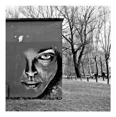 crush with eyeliner (japanese forms) Tags: ©japaneseforms2019 кошка ネコ ボケ味 モノクロ 日本フォーム 自転車 黒と白 bw blackwhite blackandwhite blancoynegro bokeh candid cat cats crushwitheyeliner gata gato gatto graffiti kat kater katje katze kot kotka monochrome neko pussy random rem schwarzweis square squareformat stencil stencilart strasenfotografie straatfotografie streetart streetphotography vlaanderen zwartwit
