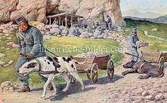 X990020 arbeitshund oesterreich (stadt + land) Tags: hunde hund bilder fotos arbeitshund historisch früher aufgabe transport alte fotografien