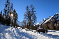 Schneeschutour Filisur - Ela SAC Hütte (bohnengarten) Tags: schweiz swiss switzerland eos 80d alpen alps berge mountain graubünden bündnerland filisur chamona ela cas sac val spadlatscha snow schnee winter sonne sonnenstrahlen sun sunbeam