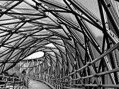 gangway (heinzkren) Tags: schwarzweis blackandwhite bw sw monochrome panasonic lumix urban architecture architektur abstract weg steg insel contemporary modern graz styria austria mur murinsel construction lines structures reling skancheli