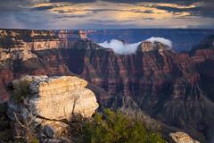 Grand Canyon (valentina425) Tags: grandcanyon arizona nationalpark fog sky rock tree travel landscape