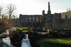 Fountains Abbey (Mike.Dales) Tags: fountainsabbey riverskell nationaltrust ruins studleyroyal ripon northyorkshire england contrejour