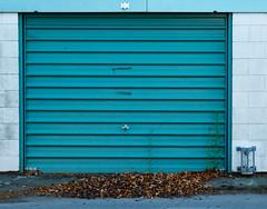 Blue Door (johnstewartnz) Tags: blue door garagedoor 2470 2470mm ef2470mmf4l canonef2470f40l 100canon canon canonapsc apsc eos 7dmarkii 7d2 7d canon7dmarkii canoneos7dmkii canoneos7dmarkii