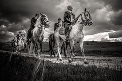 Equinos (monsugar) Tags: animal fiesta blancoynegro cielo paisaje caballos art photo