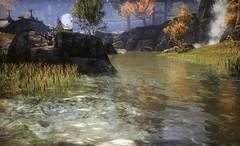 26 (Elleylie) Tags: eso elderscrollsonline tes elderscrolls videogame screenshot landscape reshade simmer river