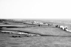 _walk along.... (SpitMcGee) Tags: strand beach spazieren walk ebbe flut ebbandflow leute people horizont horizon nordsee stpeterording schleswigholstein nordfriesland germany blackwhite schwarzweiss monochrom spitmcgee