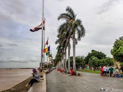 180723-13 Riverside Park (2018 Trip) (clamato39) Tags: park river rivière rivièremékong eau water ciel sky phnompenh cambodge cambodia asia asie voyage trip palmiers palms olympus urban urbain city ville