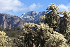 Superstition3 (ONE/MILLION) Tags: vacation travel tours visit outdoors superstition mountains church blue sky snow clouds golf course canyon lake cactus williestark onemillion saguaro rocks mailbox colorful weather lost dutchman gold mine history