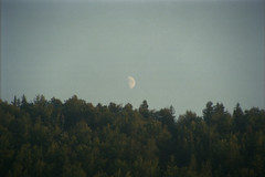 (Silvia Kuro) Tags: moon luna nature natura woods mountain mountains boschi montagne forest pagan wicca 35mm film analog analogic analogico analogica analogue photography fotografia