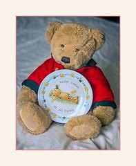 William's Message (fenman_1950) Tags: teddybear portrait sonya77