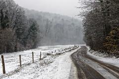 Jour de neige en Bourgogne (Lucille-bs) Tags: europe france bourgognefranchecomté bourgogne côtedor route neige hiver paysage plombièreslèsdijon clôture