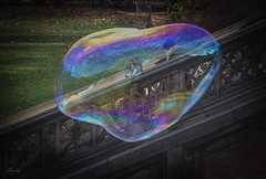 Life is like a Bubble, very colorful but momentary (Saidur Khan) Tags: bubble life color new york nyc centralpark