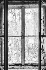 25/30 2018/01 (halagabor) Tags: bnw blackandwhite monochrome window windows urban urbex urbanexploration urbanexploring urbexphotography urbexphotos exploration exploring explorer abandoned abandonment decay derelict devastation d610 nikon nikkor lost lostplaces empty old forgotten