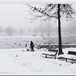 Nebel des Grauens thumbnail