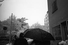 Wenn's schneit (photogunni) Tags: olympus xa2 imago320 arsimagofd