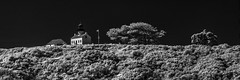 Old Point Loma Lighthouse - B&W Infrared (Bill Gracey 23 Million Views) Tags: infrared ir convertedinfraredcamera blackandwhite bw lighthouse oldpointlomalighthouse silverefexpro stark composition highcontrast panorama cropped