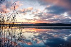 Morning glory (Fredrik Lindedal) Tags: glow morning sunrise clouds reflection reflections reed lake mirror sweden sverige landscape lindedal water calmness silence siluette visitsweden