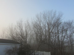 Foggy morning (creed_400) Tags: fog sun trees morning belmont west michigan spring april