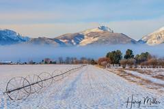 A Frosty Morning (HarryMiller002) Tags: bitterroot montana snow winter mountains florence frost fog landscape wheelline