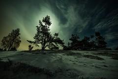 Bright moonlit night (clemensgilles) Tags: longexposure neige schnee snow mondschein moonlight moonglow sternenhimmel beautiful trees winter nightphoto nachtfotografie deutschland eifel germany
