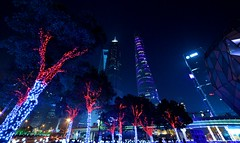 Shanghai - Trees and Towers (cnmark) Tags: china shanghai pudong lujiazui fiancial district world financial center swfc jin mao shanghaicenter modern architecture skyscraper tall supertall building towers gebäude 金茂大厦 上海环球金融中心 上海中心大厦 中国 上海 浦东 陆家嘴 摩天大楼 wolkenkratzer gratteciel grattacielo rascacielo arranhacéu design blue city cityscape night bright colored coloured light nacht nachtaufnahme noche nuit notte noite 上海中心 大厦 bäume trees illuminated ©allrightsreserved
