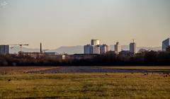 La pista di Bresso e lo Skyline di Milano (diegoavanzi) Tags: canon eos7d milano milan italia italy lombardia lombardy grattacieli skyscrapers aeroporto airport bresso runway pista