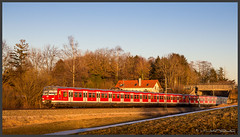 Vorfrühling im Februar (Schnitzel_bank) Tags: kottgeisering bayern deutschland sbahn et420 s4 münchen rail bahn railroadphotography vlak spoorwegen railroad railway treno trein поезд sunset sonne