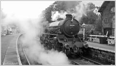 61034 Chiru (Mark's Train pictures) Tags: nymr northyorkshiremoorsrailway steamtrain steam steamlocomotive steamhauledpassengertrain 61034 lner b1 61264