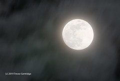 March 2019 nearly full Moon (Trevdog67) Tags: moon winter 2019 march sky night clouds hdr bracketing nikon d7500 sigma sigma150600mm moncton newbrunswick canada nature astronomy
