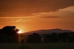 Last Sunrise of the Trip (helenehoffman) Tags: africa kenya landscape maasaimaranationalreserve orange sunrise