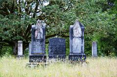 Under The Old Oak Tree (nedlugr) Tags: oregon oaklandoregon usa cemetery headstones graves oaktree