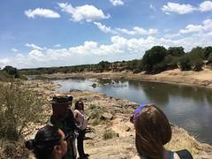 IMG_1607 (suuzin) Tags: masai mara safari