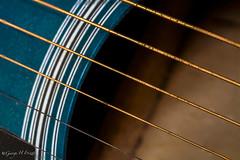 Six String (toonarmy59) Tags: macromondays hobby guitar acousticguitar strings blue music