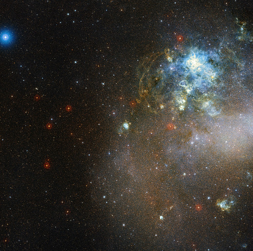 Stars Forming in the Large Magellanic Cloud, variant