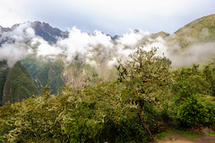 Clouds over the valley (A. Wee) Tags: machupicchu peru 秘鲁 马丘比丘 peruvian andes cloud valley mountain 山谷