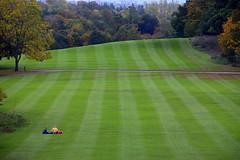 Solitude (Keith Mac Uidhir 김채윤 (Thanks for 8m views)) Tags: castle grounds garden lawn green grass park parkland ireland ierland جزيرة أيرلندا ιρλανδία irland irlande 아일랜드 アイルランド írország आयरलैण्ड गणतंत्र irlandia ирландия 爱尔兰共和国 irlanda galway 戈尔韦 голуэй ゴールウェイ 골웨이 irsko iirimaa airija lirlanda irska irlanti 愛爾蘭共和國 írẹ́lándì cộng hòa ประเทศไอร์แลนด์ ιρλανδίασ kilkenny