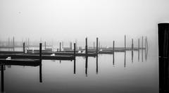 Fog (david feld) Tags: fog water docks outdoor seascape monochrome reflections