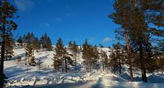 Ylläs Scenic road_2019_04_09_0054 (FarmerJohnn) Tags: lappi lapland suomi finland äkäslompolo ylläsjärvi pohjoinen north arctic arktinen kevät spring huhtikuu april hiihto skiing crosscountryskiing maisema view scenic näköala loma holiday holidayresort tunturi mountain fell aurinkoinen sunny 2019 canon canoneos5dmarkiii canonef1635l28iiusmjuhani anttonen