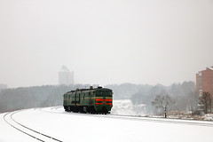 2ТЭ10МК-3568 (Life and Photo) Tags: train railroad railway rails road locomotive loco landscape landschaft belarus mogilev tree trees tower city building beautiful winter white snow snowfall windstorm 2тэ10мк3568 2тэ10 2тэ10мк